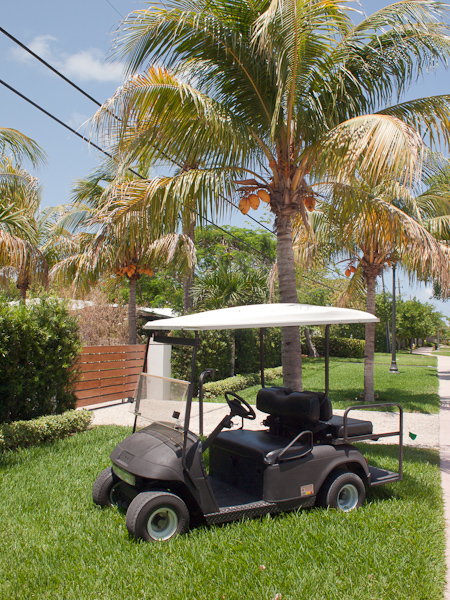 Batman Retires to Key Biscayne Batmobile Golf Cart