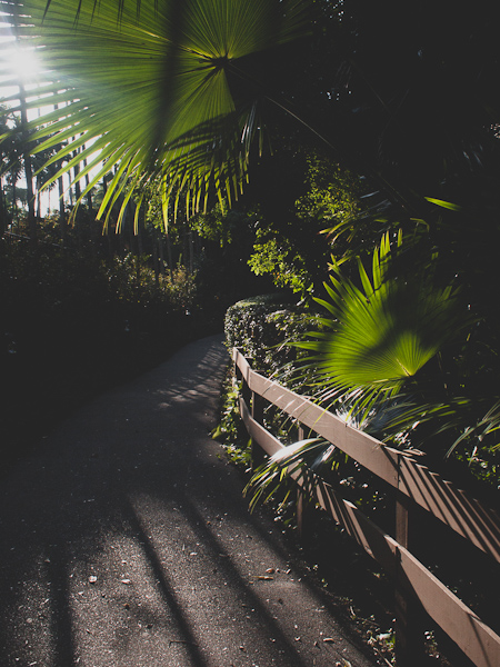 Botanica Path