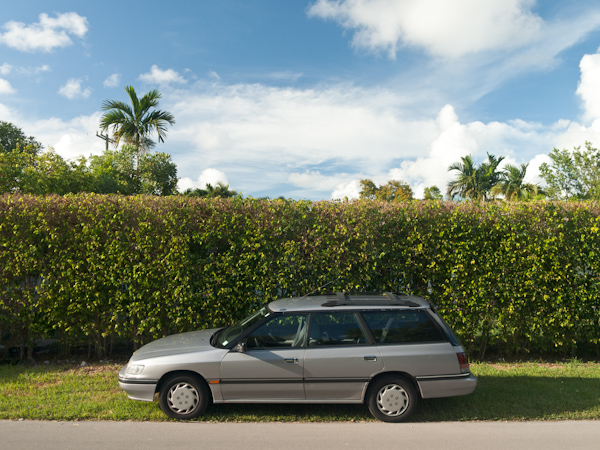 Car and Bush in Key Biscayne