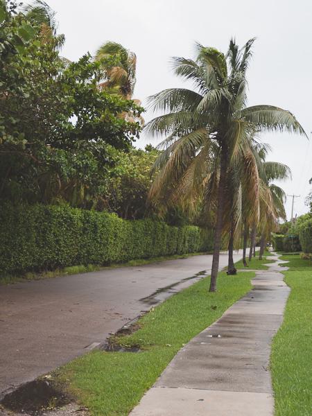 Cloudy East Drive