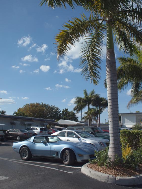 Corvette'