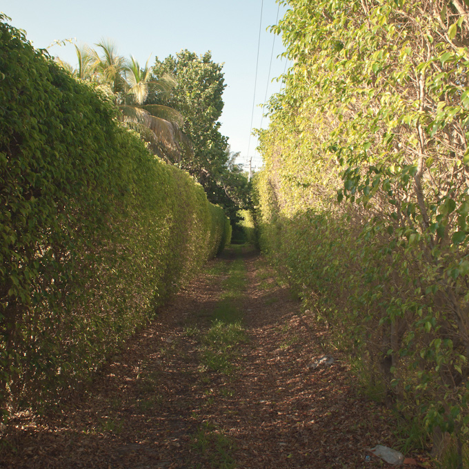 The dirt path to Calusa park behind Harbor Plaza in Key Biscayne