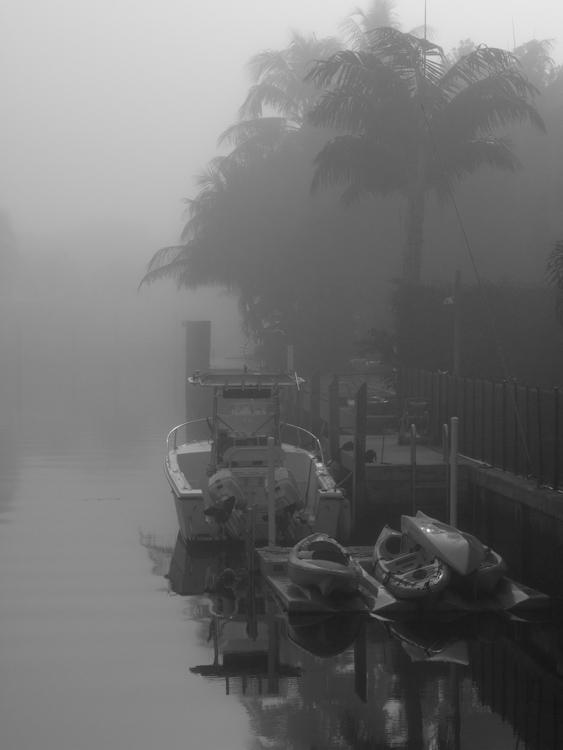 Foggy Boat