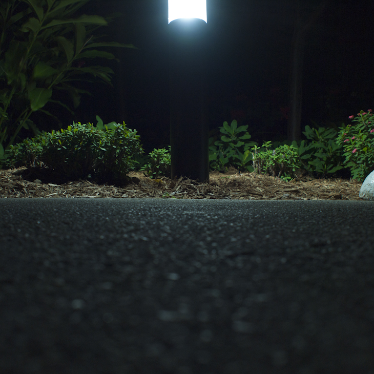 Lamp Key Biscayne