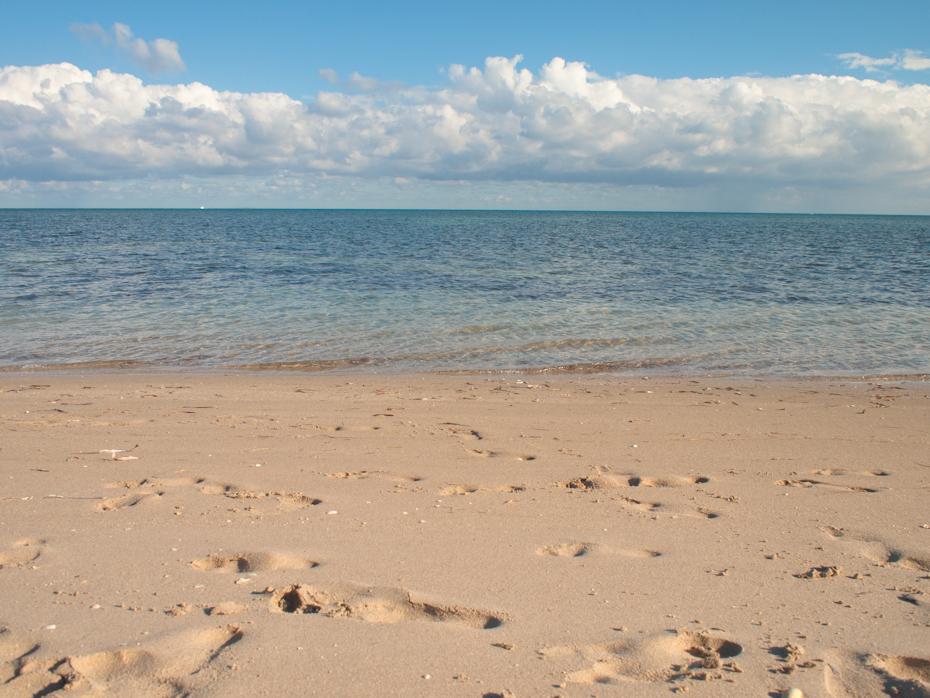 North Beach at Crandon Park Key Biscayne