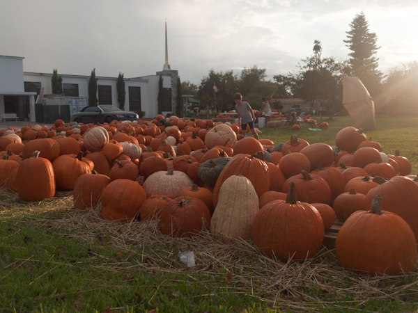 Pumkins at the Community Church in Key Biscayne