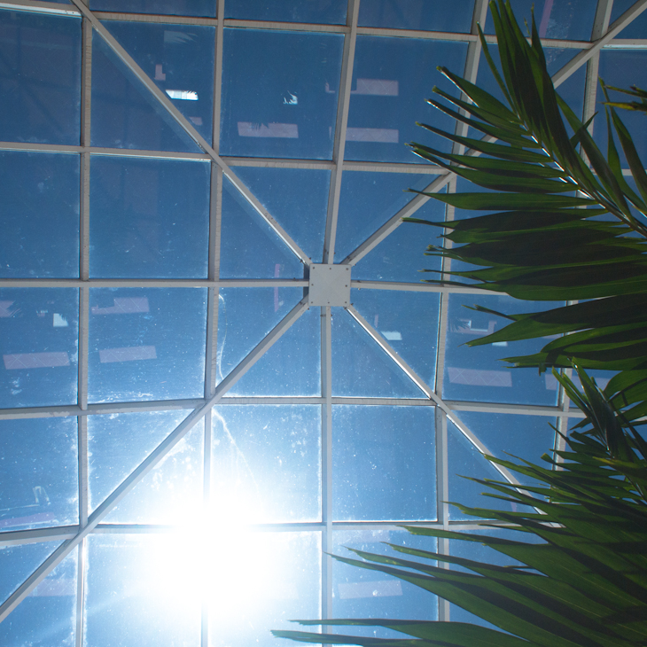 Skylight Again Key Biscayne