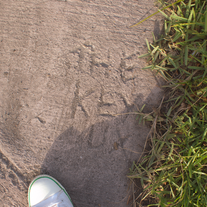 I was looking for Key Rat pride on the sidewalks, instead I found this; 'THE KEY SUX'