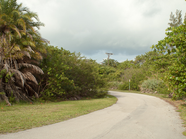 Road to Calusa Park Key Biscayne